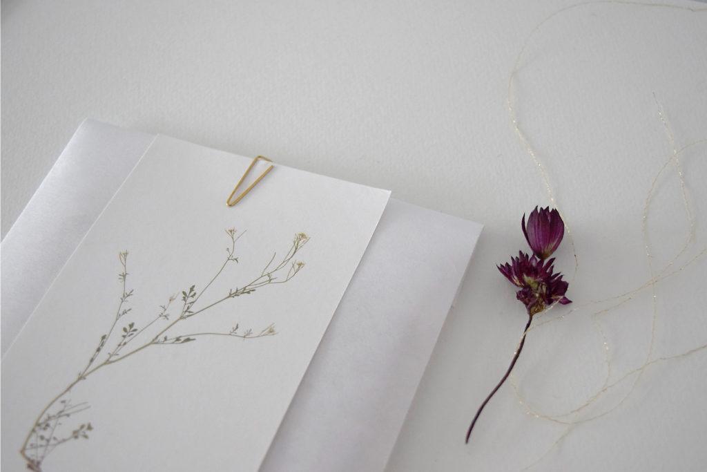 メッセージカードや一筆箋、プレゼントに添えて、など自由にお使いください。
